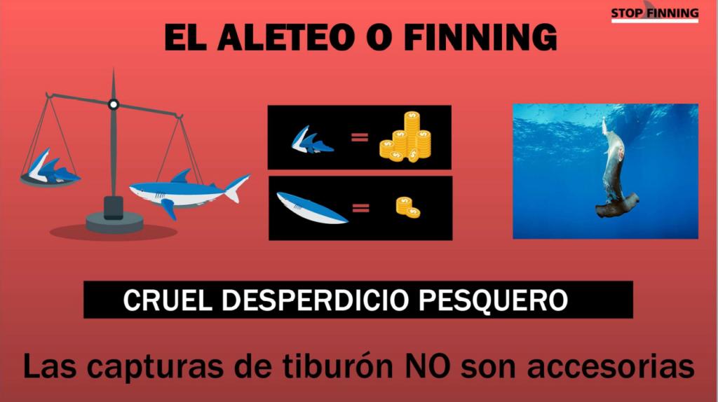 Aleteo o Finning