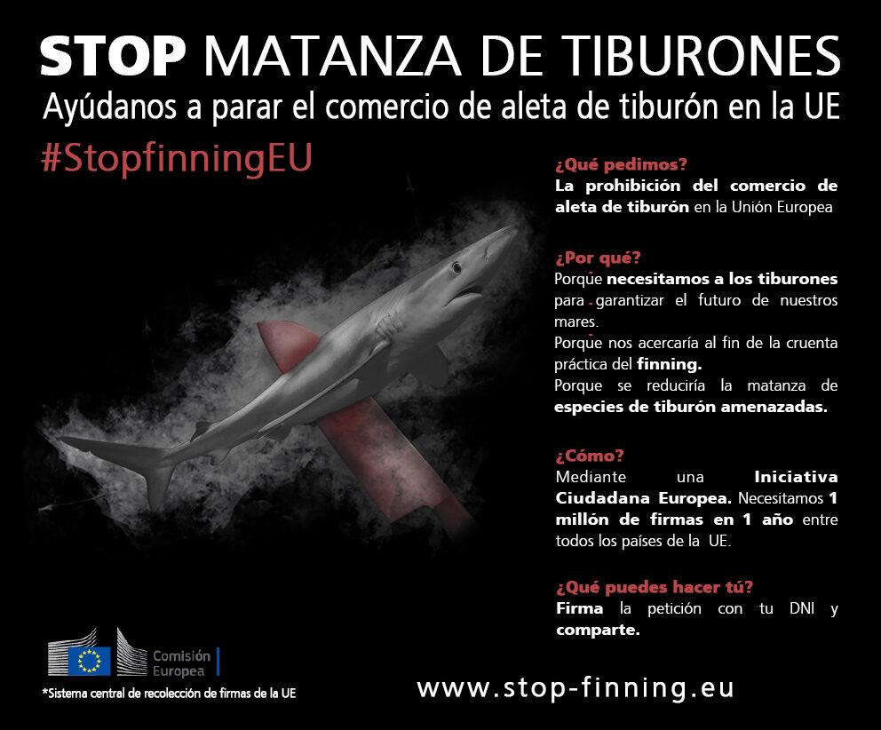 Cartel Stop Matanza