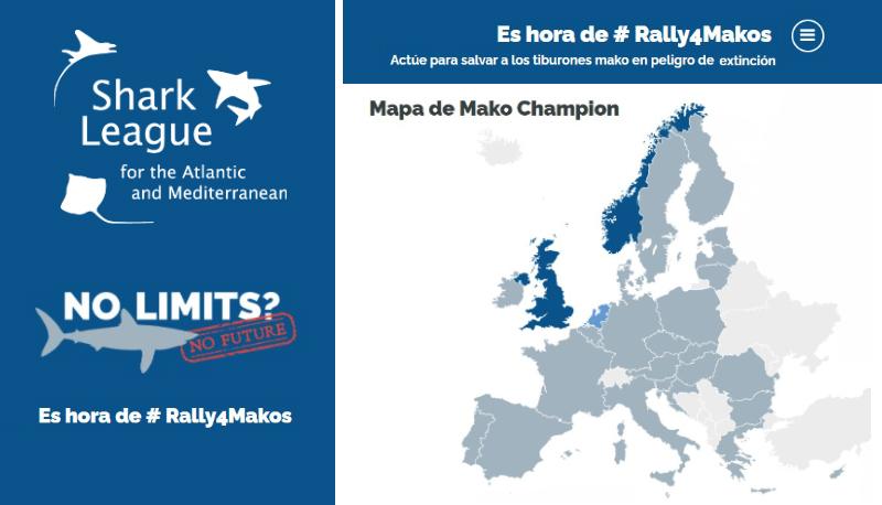 SharkLeague-Rally4Makos