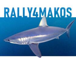 rally4makos